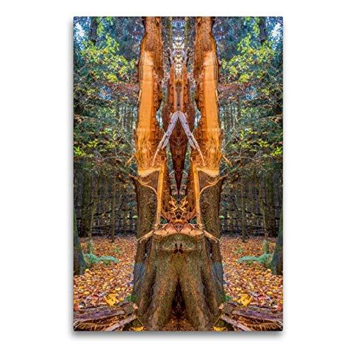 CALVENDO Art Toile en Textile de qualité supérieure 60 cm x 90 cm