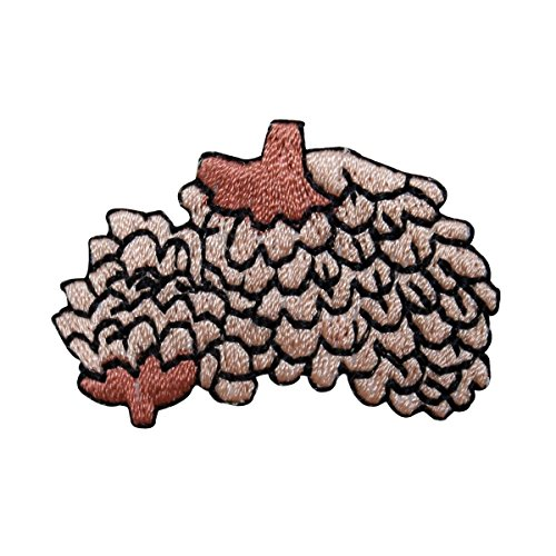 Pinecone Patch - ID 1429B Pinecone Bundle Patch Pine Tree Seed Fall Embroidered Iron On Applique