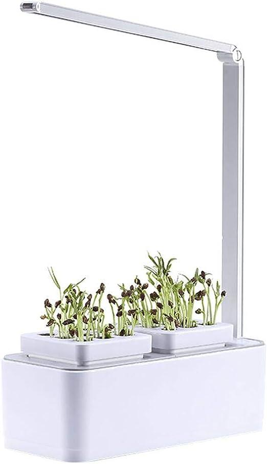 Ruier-hui Sistema de Cultivo hidropónico Inteligente- Interior jardín hidropónico Sistema de Crecimiento LED con 2 Self riego macetas hortícolas 360 Grado Brazo Ajustable y bajo Nivel de Agua Alarma: Amazon.es: Hogar