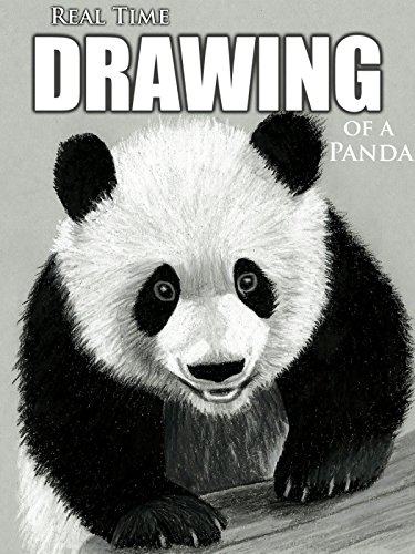Real Time Drawing of a Panda by