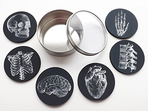 Anatomy Goth Gift Set Drink Coasters skull anatomical heart male nurse practitioner doctor physician ()