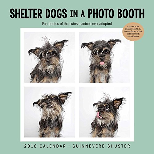 Shelter Dogs in a Photo Booth 2018 Wall Calendar