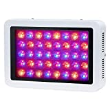 600W LED Plant Grow Light Full Spectrum Hydroponic System for Greenhouse and Indoor