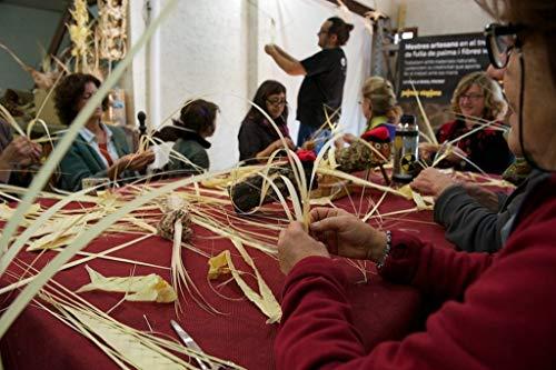 Palmas para Domingo de Ramos ONLINE | Palmas Viaplana - Maestros ...