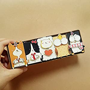 DIY Matchbox-cards - Set of 5 - Do It Yourself Animal Greeting Cards - Assorted Boxed Card Set for Kids - All Occassion Cards - DY003