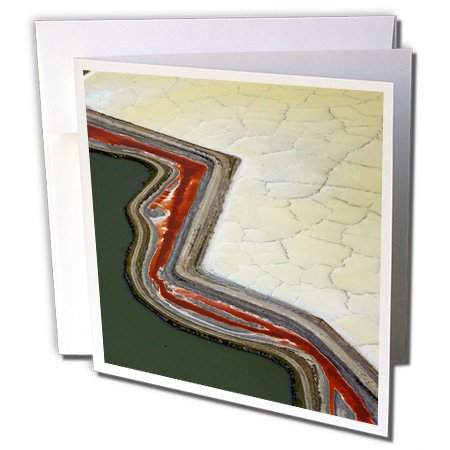 danita-delimont-abstract-usa-san-francisco-colorful-algae-6-greeting-cards-with-envelopes-gc-230110-