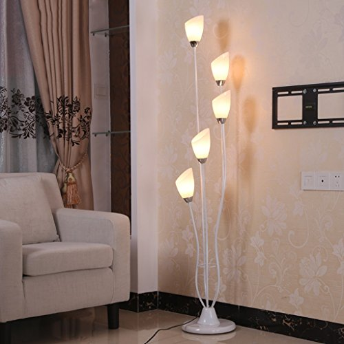 Lamp Acrylic Floor Shade (Bedroom Floor Lamp, Personality Modeling, Paint Iron Art Lamp Body, Acrylic Lampshade, Living Room Decoration Reading Lamp)