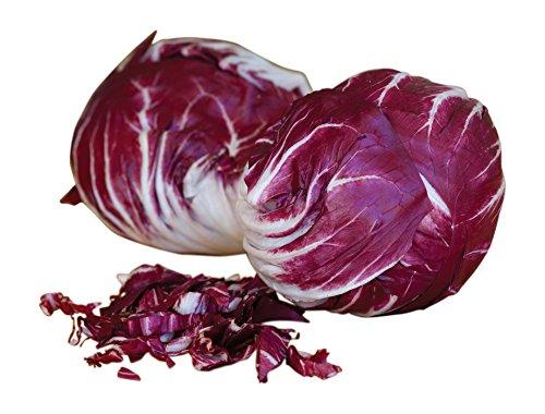 Verona Salad (Burpee Chicory Red Verona Radicchio Seeds 500 seeds)