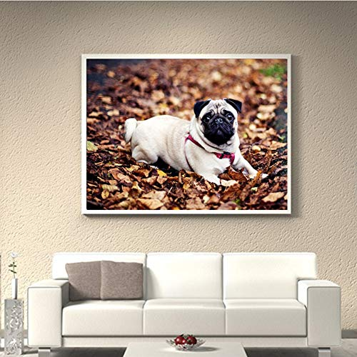 - CqmzpdiC DIY, Gifts, No Frame, Modern Decoration, Full Drill, Gift for Dog Lover Fashion Full Drill Animal Pug Dog Embroidery DIY Resin Diamond Painting Decor - Y017