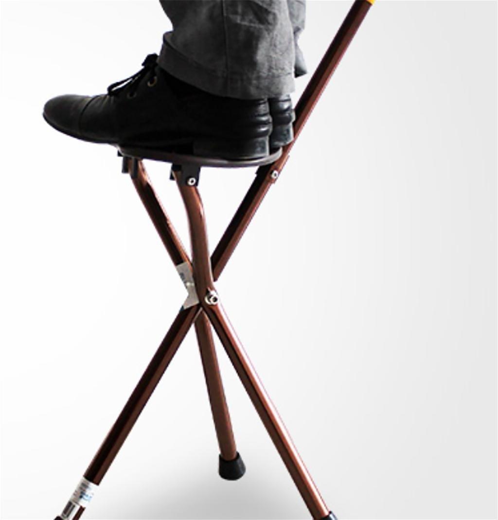 Amazon.com: ttel caña Asiento – Bastón plegable y ajustable ...