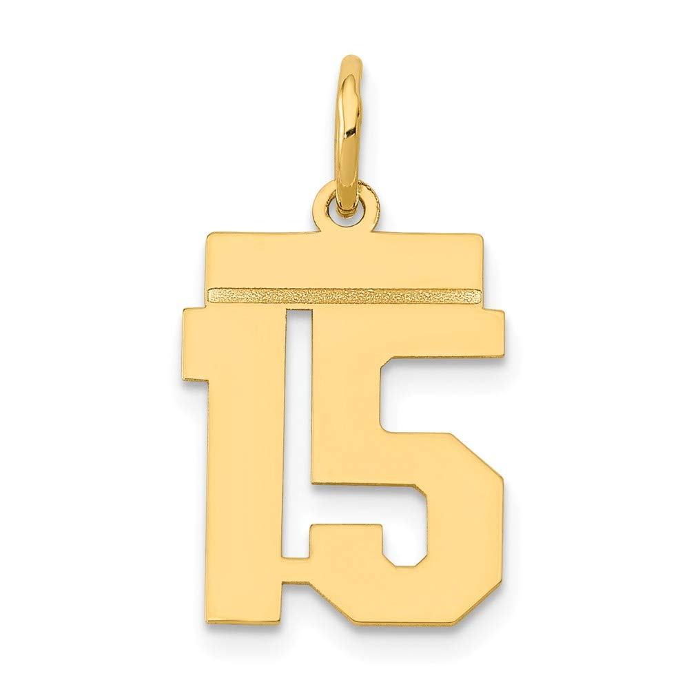 14k Yellow Gold Small Polished Number 15 Charm
