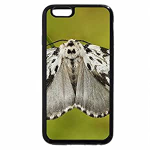iPhone 6S / iPhone 6 Case (Black) LYMANTRIA MONACHA
