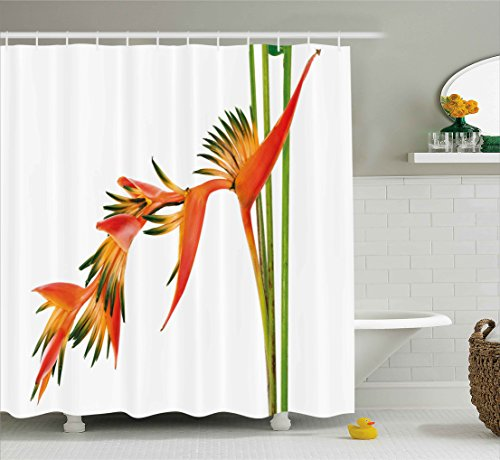 - Ambesonne Floral Shower Curtain, Exotic Tropical Flowers on Branch Colorful Nature Jungle Garden Theme Image Print, Fabric Bathroom Decor Set with Hooks, 75 Inches Long, Green Orange