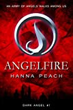 Angelfire: A Young Adult Fantasy (Dark Angel Saga Book 1)