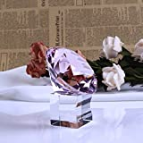 YWHL 80 mm Crystal glass Diamond Paperweight with glass stand Home decor/ Office decorationfor/ valentines day gift (pink)