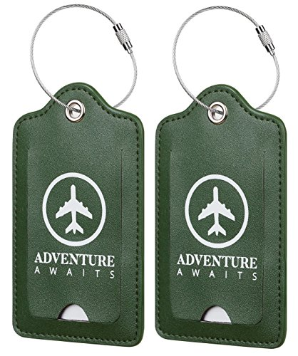 Any Instruments Two (Chelmon Leather Luggage Tags Baggage Bag Instrument Tag 2 Pcs Set (Green Coast 7146))