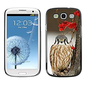 All Phone Most Case / Hard PC Metal piece Shell Slim Cover Protective Case Carcasa Funda Caso de protección para Samsung Galaxy S3 I9300 winter berries snow bird hawk prey