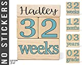 Baby Age Blocks - NO STICKERS - 20 Color Scheme Options! (Example: Teal) - Baby Milestone Blocks