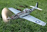 maxflite.de P-51 Mustang Airplane Wind Wheel/Spinner, Propeller Turns in Wind, Gardendecoration - Stainless