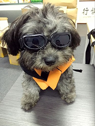 Enjoying Dog Goggles - Small Dog Sunglasses Waterproof Windproof UV Protection For Doggy Puppy Cat - Black