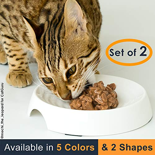 Top 10 recommendation saucer dish for cats
