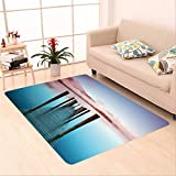 Sophiehome skid Slip rubber back antibacterial  Area Rug ashness pier the pier is a landing stage on the banks of derwentwater cumbria in the english 89361619 Home Decorative