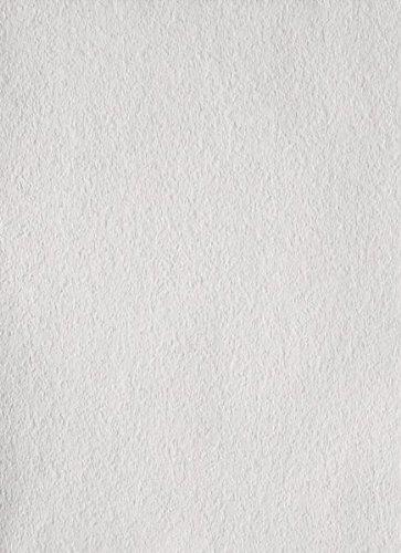 Erfurt Rauhfaser 20 Großrolle fein weiss (Profiqualität) Länge:125 m / Breite:0,75 m für ca. 93,7 m²