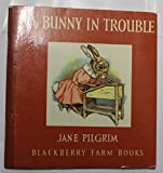 A Bunny in Trouble (Little Books)
