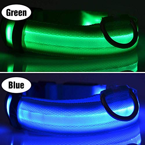 PCS Lights Collars Waterproof Walking