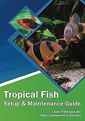 Tropical Fish: Setup & Maintenance Guide