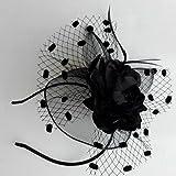 Coolwife Womens Fascinator Veil Flower Cocktail Tea Party Headwear (Black)