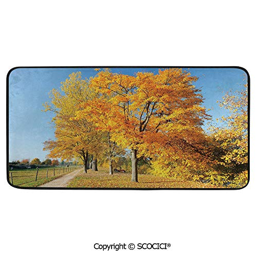 Rectangular Area Rug Super Soft Living Room Bedroom Carpet Rectangle Mat, Black Edging, Washable,Fall,Maple Trees in The Rural Countryside Natural Landscape Tranquil,39