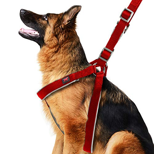 Heavy Duty No Pull Dog Harness | Halter Style Dog Training Harness | 3M Reflective Dog Harness Increases Safety For Night Walks | Adjustable Fit Harness For Dogs | Padded Dog Harness For Comfort RedL ()