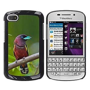 FlareStar Colour Printing Madagascar Tropical Bird Green Ornithology cáscara Funda Case Caso de plástico para BlackBerry Q10