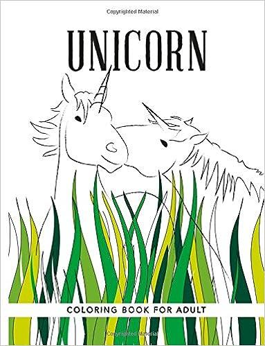Amazon Unicorn Coloring Books For Adults 9781518611247 Individuality