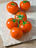 CLUSTER TOMATOES FRESH PRODUCE FRUIT VEGETABLES 4 PACK
