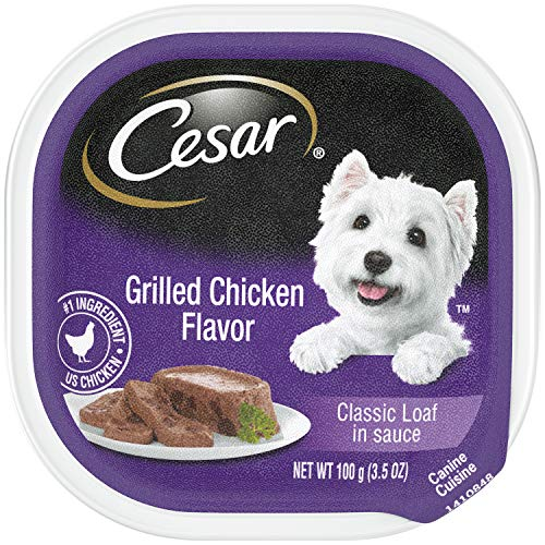 CESAR Wet Dog Food Classic Loaf in Sauce Grilled Chicken Flavor, (24) 3.5-oz Trays