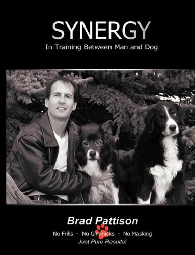 Download Synergy ebook