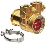"Procon 112A060F11CA Brass Rotary Vane Pump, 3/8"" NPTF, 73 GPH"