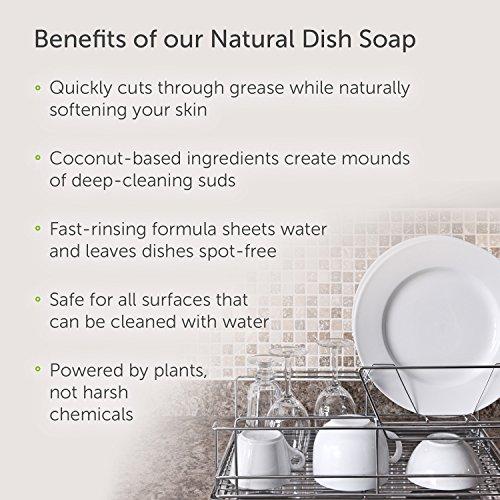 Puracy Natural Liquid Dish Soap Sulfate Free Dishwashing