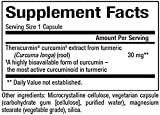 Natural Factors - CurcuminRich Theracurmin 30mg, Inflammation Support for Joints, Heart, and Circulation, 30 Vegetarian Capsules