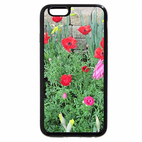 iPhone 6S / iPhone 6 Case (Black) Pyramids Blooms Flowers 07