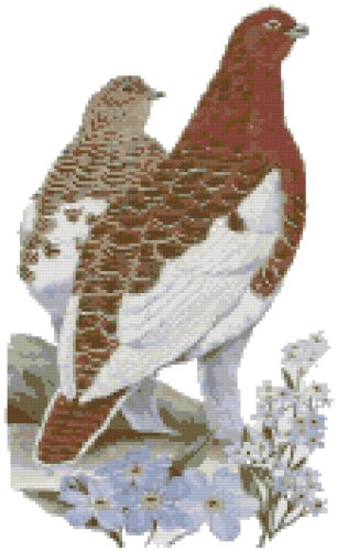 Alaska State Bird (Willow Ptarmigan) and Flower (Forget-Me-Not) Counted Cross Stitch Pattern
