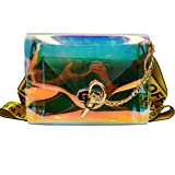 Felice Summer Clear Handbags Fashionista Shoulder Message Bags with Interior Envelope Clutch (transparent)