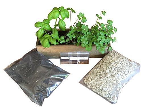 Rustic Indoor Herb Garden Kit (Rustic) Start Growing Culinary Herbs in your Kitchen Window Grow Cilantro, Basil, and (Growing Herbs Window Box)