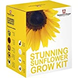 Stunning Sunflower Seed Growing Kit Gift Box - 5 Colourful & Contrasting Flowers to Grow; Helios, Velvet Queen, Dwarf Yellow Spray, & Valentine seeds by Thompson & Morgan