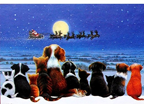 (Hamilton Creek Designs Boxed Set of 18 Glitter Embellished Christmas Cards, Puppies and Kittens watching Santa's Sleigh )