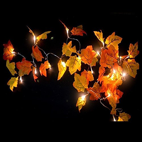 Decorations Lighted Fall Garland,FANSIR Maple Leaf String Lights,Shades of Orange and Yellow Leaves with 8.2 Feet 20 LED Lights,Perfect Christmas Gift (Warm white) (Mantels Fireplace Fall)