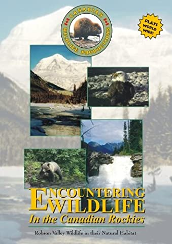 Encountering Wildlife In The Canadian Rockies (Rocky Mountain National Park Dvd)