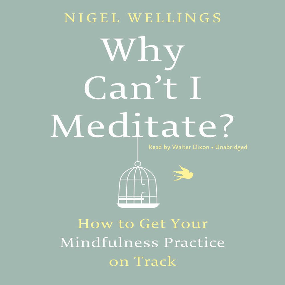 Why Can't I Meditate? How to Get Your Mindfulness Practice on Track ebook